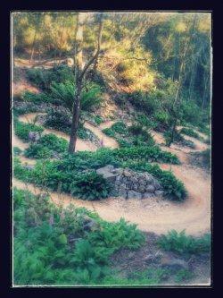 Blue Derby Trail