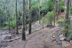 Source: http://www.dorset.tas.gov.au/mountain-bike-trails