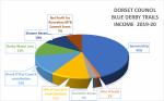 Dorset Council Blue Derby Income 2019-20
