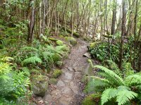Greater Hobart Mountain Bike Master Plan Update