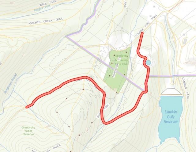 Illegal Track Rehabilitation near Glenorchy MTB Park