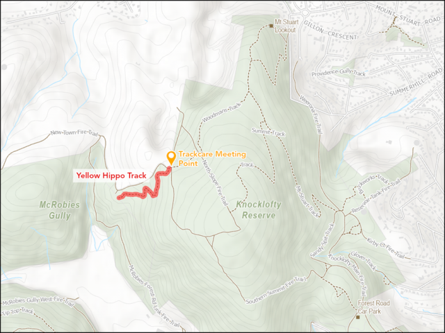Mt Wellington/kunanyi Trackcare Dig Day (Yellow Hippo)