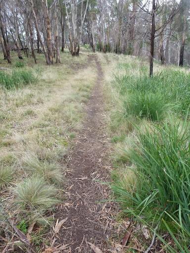Meehan Range Trail Announcements - July 2015
