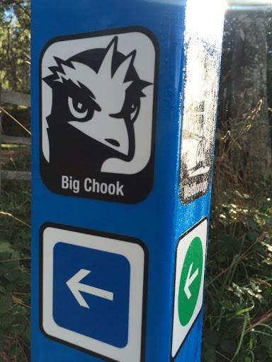 Big Chook (Blue Derby)
