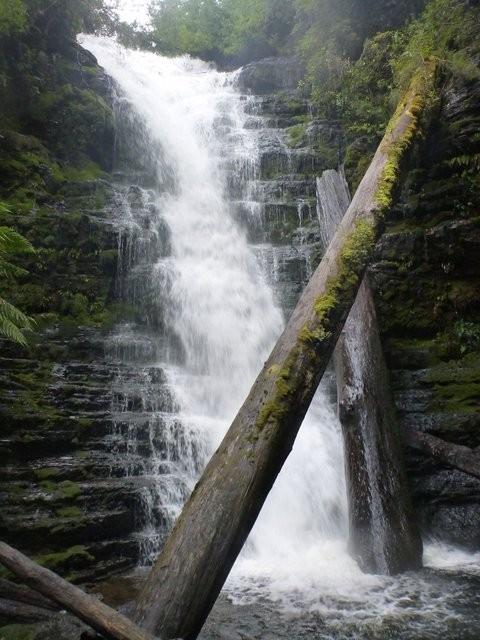 Reuben Falls (Tahune Airwalk)